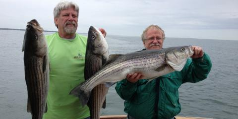 Get Ready for the First Fishing Trip of the Season: The Spring Migration, Old Saybrook Center, Connecticut