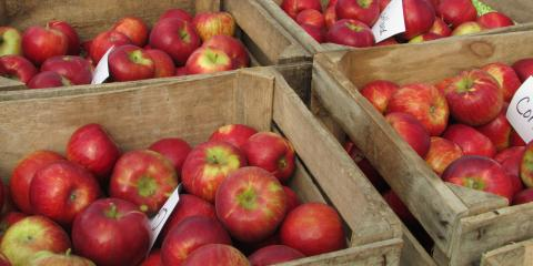 Apple Dapple Day - Oct. 12, 2019 & Weekly Specials, Byron, Wisconsin