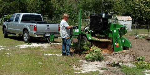 4 Commonly Asked Questions About Stump Grinding, Midland City, Alabama