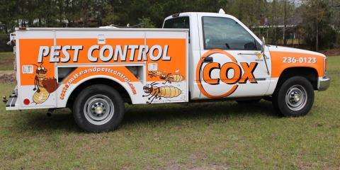 What to Look For in a Reliable Pest Control Company, Garden City, Georgia