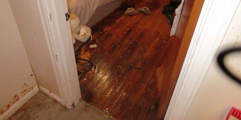 CincyDry, Water Damage Restoration, Services, Cincinnati, Ohio