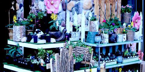 30% OFF Live Plants & 20% OFF Outdoor Decor Sale, Onalaska, Wisconsin
