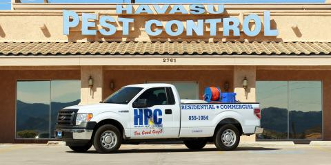 3 Weed Control Tips for Monsoon Season, Lake Havasu City, Arizona