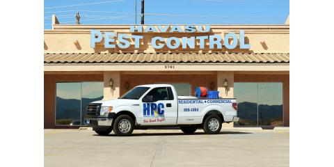 Termites & Your Home: The Importance of Termite Inspections, Lake Havasu City, Arizona
