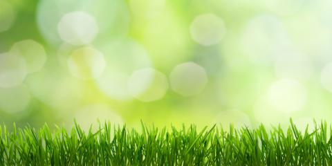 Lawn Care Specialists Explain the Importance of Aeration, Enterprise, Alabama