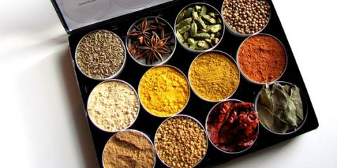 Indian cooking class, Asheville, North Carolina