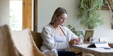 3 Tips to Help Your Indoor Plants Thrive, Anchorage, Alaska
