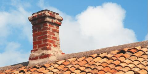 Top 3 Signs You Have an Animal in Your Chimney, Trussville, Alabama