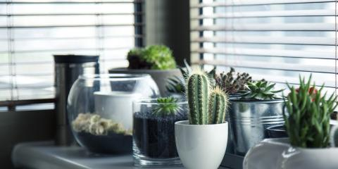 Why You Should Purchase Impact Windows for Your Home: Insurance Experts Explain, Fort Mohave, Arizona