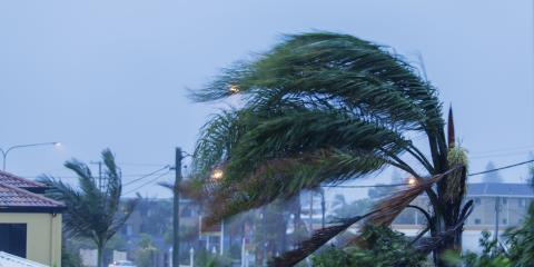 3 Important Steps to Prepare Your Home for Hurricane Season, Longwood, Florida