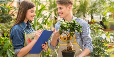 3 Reasons You Need a Professional to Take Care of Your Landscaping Needs, Randolph, New York