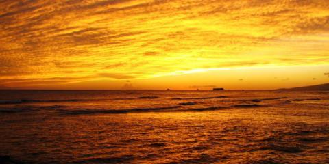 Island Wellness Center Explains the Basics of Naturopathic Medicine, Honolulu, Hawaii