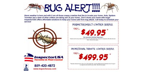Bug Alert!!!, Lexington-Fayette, Kentucky