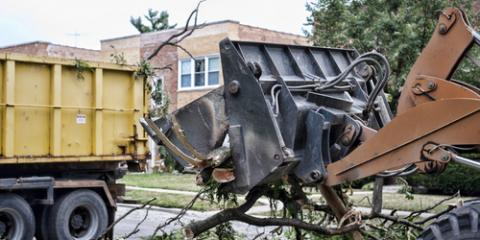 When Should You Schedule Tree Removal Services?, High Point, North Carolina