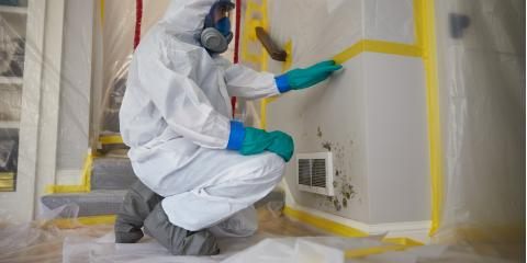 3 Dangers Of Mold In Your Home, Lexington-Fayette, Kentucky