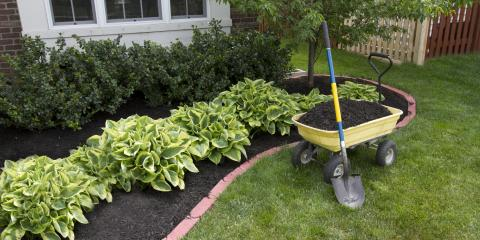 5 Benefits of Adding Mulch to Gardens, Clearwater, Minnesota