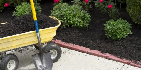 Can You Control Weeds by Using High-Quality Mulches?, Lexington-Fayette, Kentucky