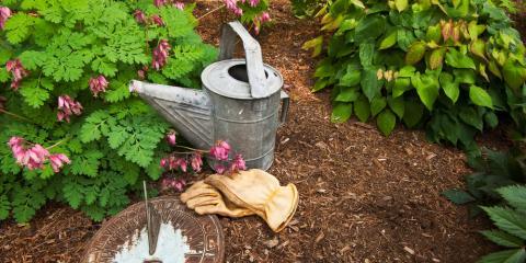A Beginner's Guide to Using Mulches , Lexington-Fayette, Kentucky