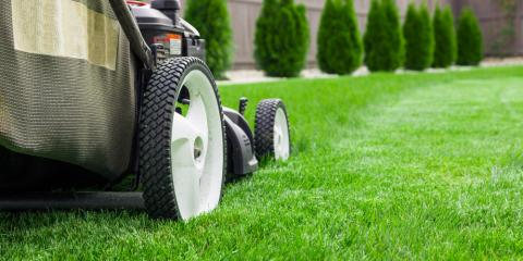 Lawn Mower Parts: When to Hire Professionals Versus DIY, Lancaster, Wisconsin