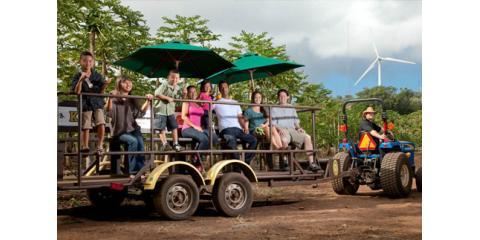 Say Goodbye to Summer Boredom With 3 Exciting Family Activities at Kahuku Farms, Kahuku, Hawaii