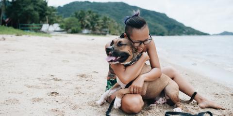 5 Creative Ways to Honor Your Pet's Memory, Koolaupoko, Hawaii