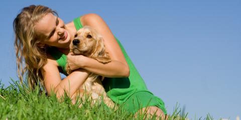 4 Ways to Memorialize Pet Ashes, Koolaupoko, Hawaii