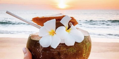 4 Meaningful Health Benefits of Coconut Water, Brooklyn, New York