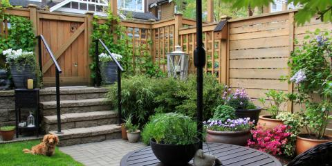 3 Reasons a Fenced-In Yard Is Essential for Dog Owners, Kalispell Northwest, Montana