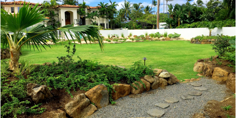 4 Questions About Native Hawaiian Plants to Ask Your Landscaping Company, Koolaupoko, Hawaii