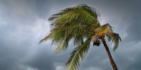 What to Do Before & After a Hurricane, Koolaupoko, Hawaii