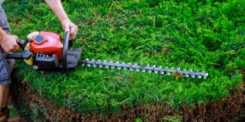How to Find the Right Landscapers for Your Property, Wailua-Anahola, Hawaii