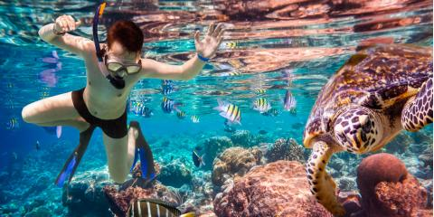 Do's & Don'ts of Taking a Snorkeling Tour, Ewa, Hawaii