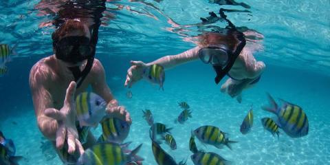 4 Snorkeling Tips for Beginners, Kekaha-Waimea, Hawaii
