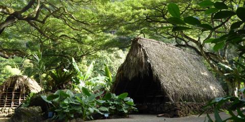Interested in Hawaiian Culture? 3 Historic Sites to See at Waimea Valley, Koolauloa, Hawaii