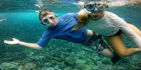 Take the Kealakekua Bay Snorkel Tour With Hawaii's Aloha Kayak, Kealakekua, Hawaii