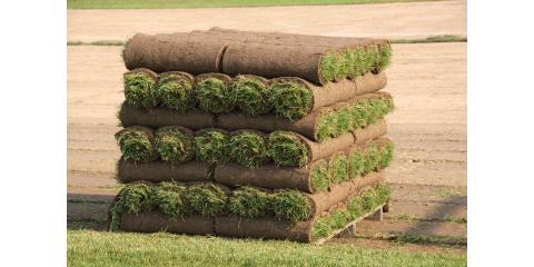 The Best Time of Year for Sod Installation, St. Peters, Missouri