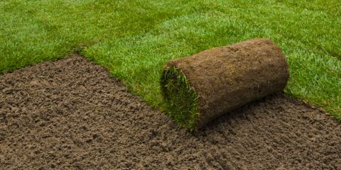 3 Tips for Lawn Care After Sod Installation , O'Fallon, Missouri