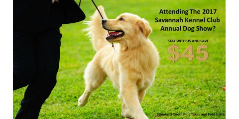 Savannah Kennel Club Annual Dog Show Special, Richmond Hill, Georgia