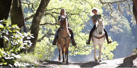 How to Prepare for a Horse-Riding Trail Trip, Versailles, Kentucky