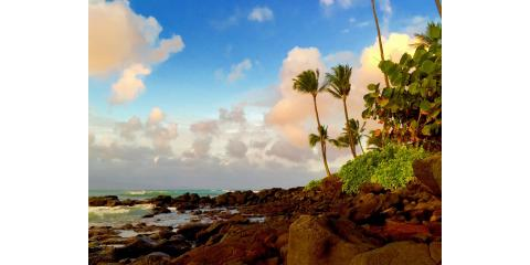 Your Maul Condo Rental Company Outlines the Best Hiking Opportunities, Kihei, Hawaii