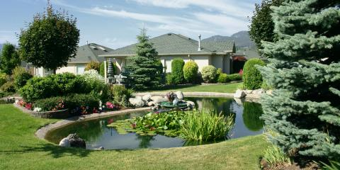 What to Consider Before Adding a Pond to Your Yard, Kalispell, Montana