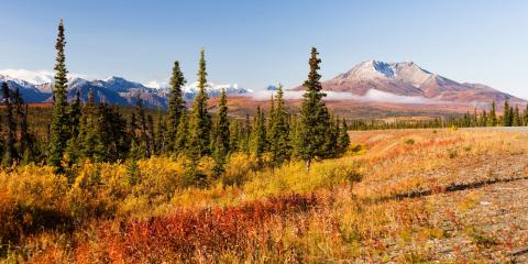 5 Facts You Didn't Know About Alaska's Soil, Kodiak, Alaska