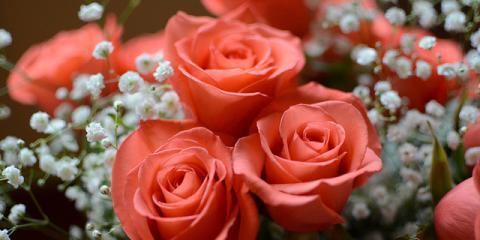 Kreations by Karen Provides Gorgeous Get-Well Flower Arrangements, Lexington-Fayette, Kentucky