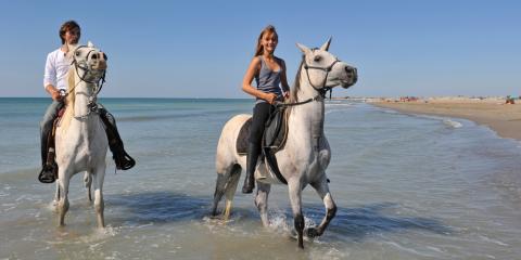 A Brief Guide to Horseback Riding's Influence on Paniolos & Hawaiian History, Waikane, Hawaii