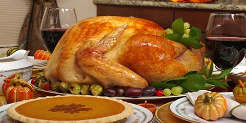 5 Tips for Thanksgiving Pest Control, Miami, Ohio
