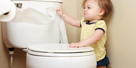 3 Common Problems That Require Toilet Repairs, Edgewood, Kentucky