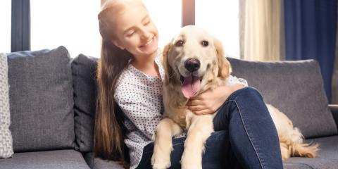 HVAC System Do's & Don'ts to Keep Your Pet Safe, La Crosse, Wisconsin