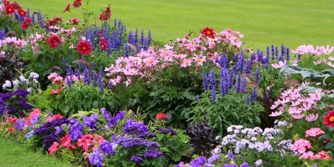 A Guide to Redoing Your Flower Beds, Medary, Wisconsin