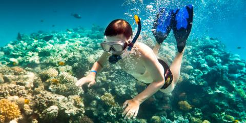Now That You Have New Snorkel Gear, Here's 4 Tips for Your First Trip, Lahaina, Hawaii