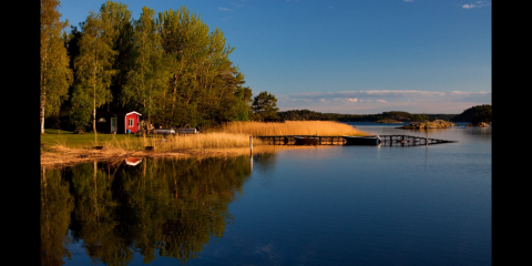 5 Things About Your Lakeside Cabin's Septic System That You Need To Know, Powers, Minnesota
